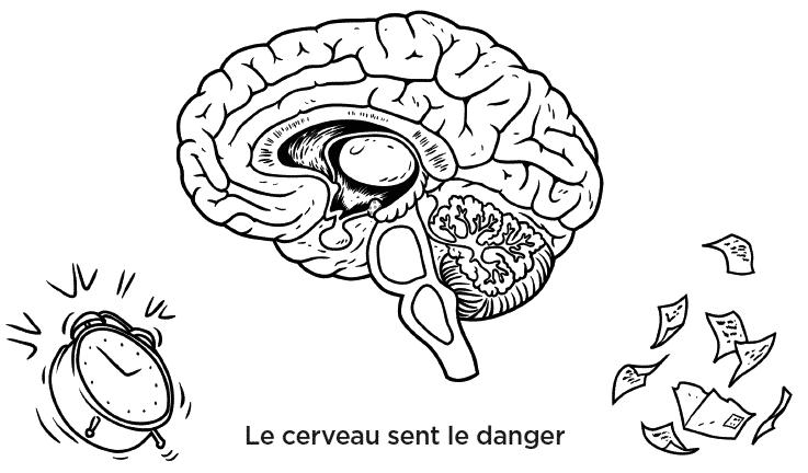 Le cerveau sent le danger