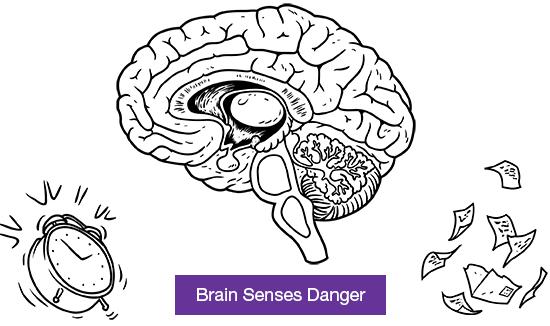 Brain senses danger