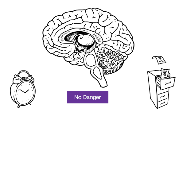 Brain: no danger