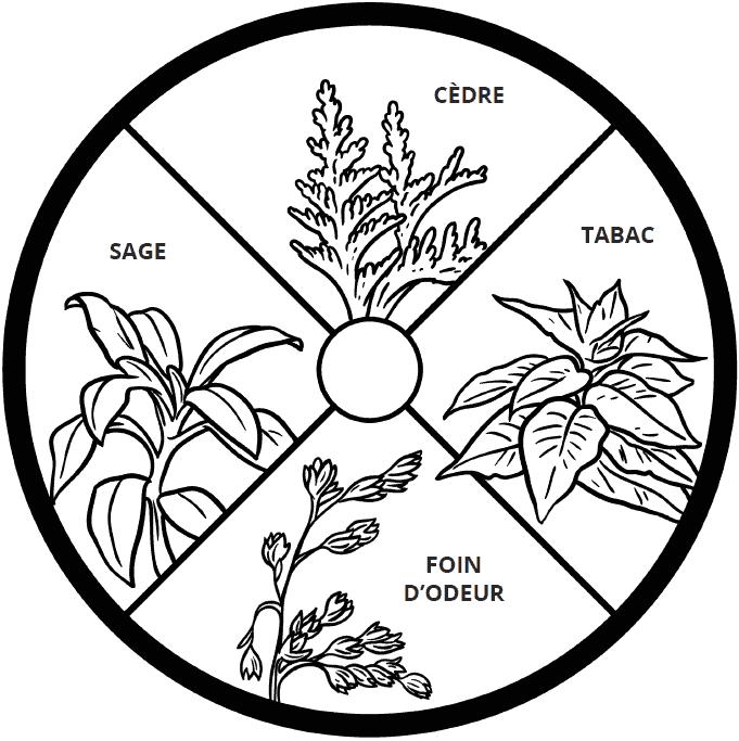 plantes sacrées : cèdre, tabac, foin d'odeur, sauge
