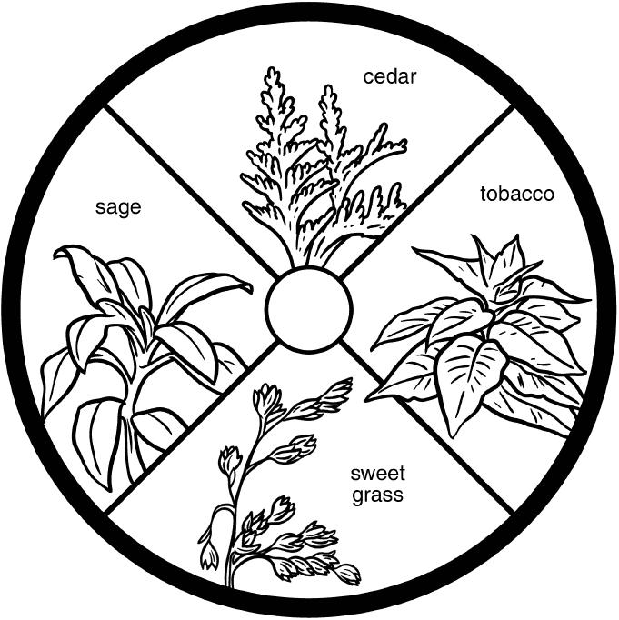 sacred plants: cedar, tobacco, sweet grass, sage